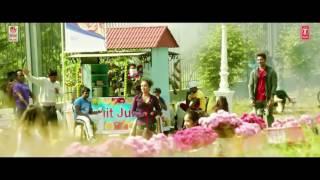 Sarainodu mla video song full hd