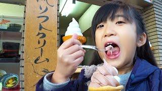 だざいふお散歩とクレーンゲーム kan & Aki family fun