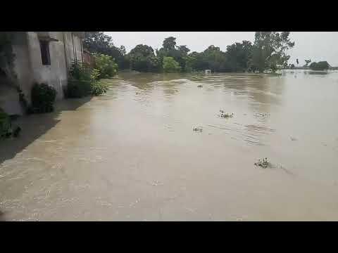 Xxx Mp4 Harishchandrapur Flood 3gp Sex