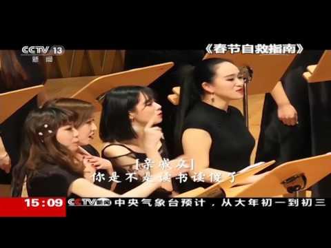 [2017一年又一年]《春节自救指南》 | CCTV春晚