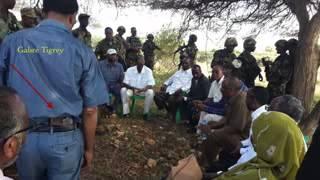 Hees Gabre -Gumeeysiga Ethiopia iyo Kacdoonka Soma