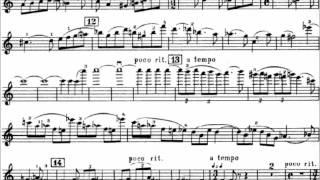 Shostakovich Violin Concerto No. 1 Op. 99 (I. Nocturne)(Hilary Hahn)