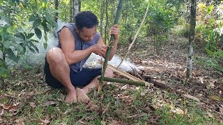 Primitive Skills; Trapping and Hunting, live videos in forest | Live#1