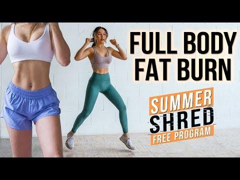 Xxx Mp4 Intense 25 Min Full Body FAT BURNING Workout 🙋♀️ No Jumping Beginner Friendly 3gp Sex