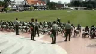 Askar 1RAMD Kena Front Support