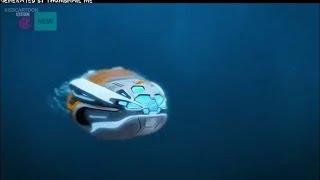 The Deep E22 - Strange Migration