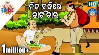 Nija Budhire Bata chala(ଆଈ ମା କାହାଣୀ ସିରିଜ୍) Aaima Kahani Series | Carton Movie by Sarthak Music