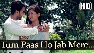 Tum Paas Ho Jab Mere (HD) - Rashmi Desai - Yeh Lamhe Judaai Ke Songs