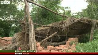 BBC News   Zimbabweans forced to live side by side with wild animals