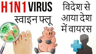 स्वाइन फ्लू H1N1 Virus Spreading Fast  विदेश से आया देश में वायरस Swine Flu - Current Affairs 2018