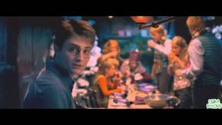 Harry Potter und der Orden des Penners Teil 8