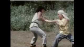 Secret of shaolin kung fu - Final fight scene