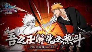 Bleach Border Territory: Death Battle