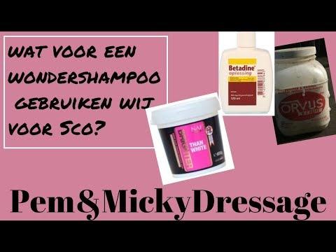 HOE houden wij SCO zo SCHOON?! // Pem&MickyDressage