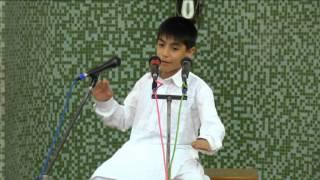 Ayman Video