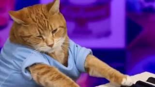 Keyboard Cat OLD SCHOOL