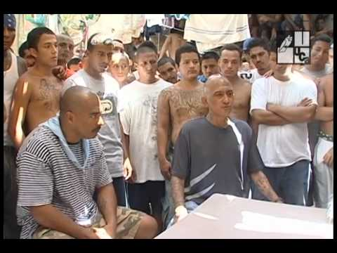 Xxx Mp4 Paz En El Barrio 2012 3gp Sex