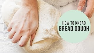 How to Knead Dough (without  a stand mixer!)