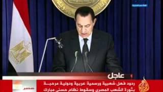 تقرير فوزى بشرى عن تنحى حسنى مبارك