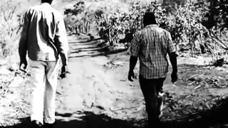 About Prophet Emmanuel Makandiwa
