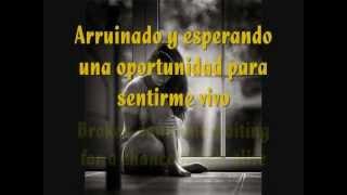 Linkin Park - In my remains (Español/Inglés)