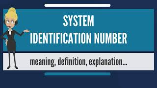 What is SYSTEM IDENTIFICATION NUMBER? What does SYSTEM IDENTIFICATION NUMBER mean?