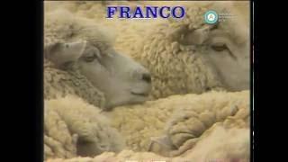 """Historias de la Argentina secreta"": Patagonia cenicienta, 1991"