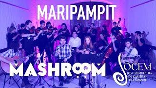 Mashroom feat JOCEM | La Pegatina vs Black Eyed Peas vs  Bongo Botrako vs Carles Belda [Live Mashup]