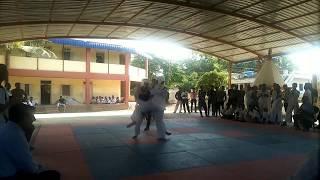 Taekwondo male fight under 87kg 2017