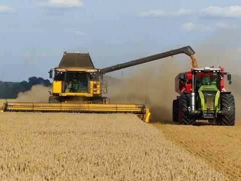Wielkie Żniwa Stary Jaworów 2014 Milikowice Big Harvest in Poland 5x Lexion 2x CR 9090