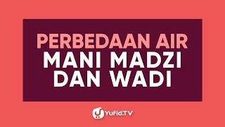 Perbedaan Air Mani Madzi dan Wadi - Poster Dakwah Yufid TV