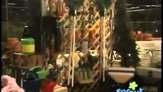 Shawn & the Beanstalk Part 2
