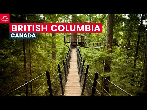 Road to 150 Best Things To Do In British Columbia
