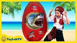 GIANT SHARK EGG SURPRISE OPENING w/ Shark Toys & Sharky vs Pirate Aaron & LB Fun Kids Video ToyLabTV