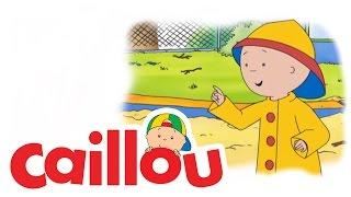 Caillou - Caillou the Road Builder  (S04E03) | Cartoon for Kids