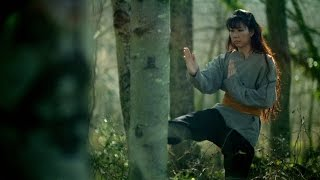 Nature as Inspiration for a New Fighting Style