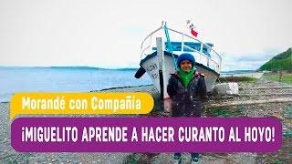 Miguelito aprende a hacer curando al hoyo - Morandé con Compañía 2016