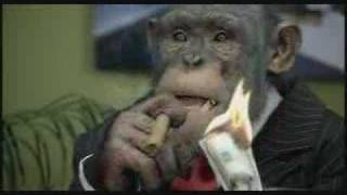 CareerBuilder.com: Monkey Business (Up - Down Profitability)