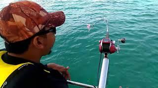 Daiwa seaborg MT750 + Miya epoch 140m rod + jenahak pulau sembilan