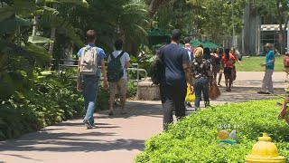 University Of Miami Campus Reopened To Students, Classes Begin Monday