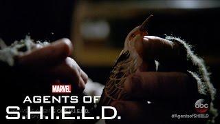 This Where I Die – Marvel's Agents of S.H.I.E.L.D. Season 3, Ep. 15