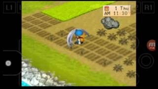 harvest moon back to nature indonesia  part 34