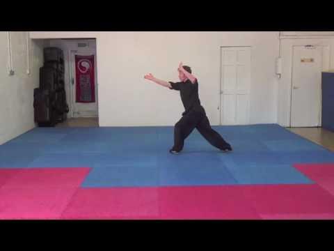 Learn Choy Li Fut Kung Fu Five wheel fist