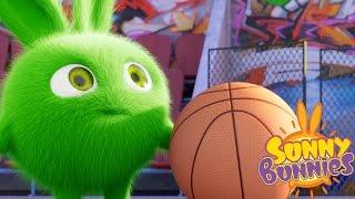 Cartoons for Children | Sunny Bunnies THE SUNNY BUNNIES PLAY BASKETBALL| Funny Cartoons For Children