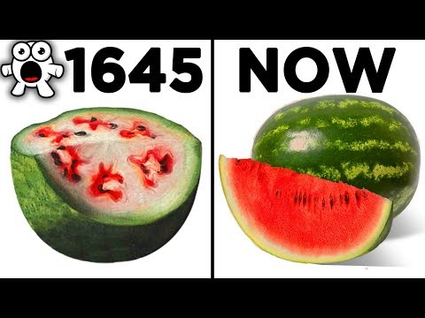 Foods That Originally Looked Totally Different