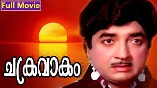 Malayalam Full Movie | Chakravakam | Superhit Movie | Ft. Prem Nazir, Adoor Bhasi
