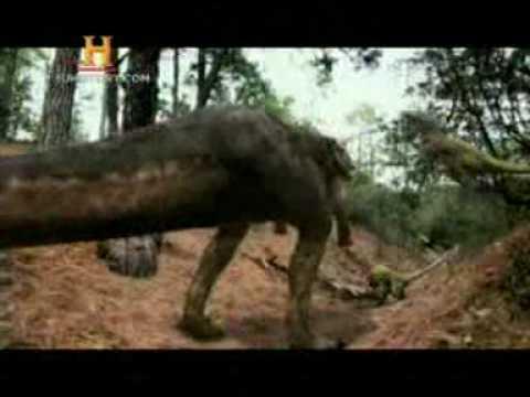 Mundo Jurásico Raptores Vs Tiranosaurio Parte 5 de 5