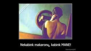 Žilvinas Žvagulis - Itališka dainelė (ru versija) :D