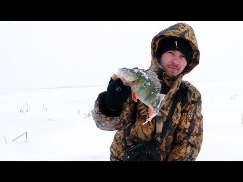 форум рыбаков мензелинск