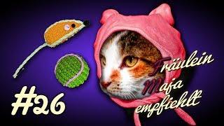 Katzen-Bin das Baby, musst mich lieb haben. 5 Gründe warum Katzen nie erwachsen werden. #026
